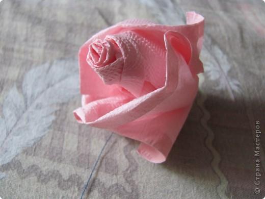 Розовое деревце фото 8