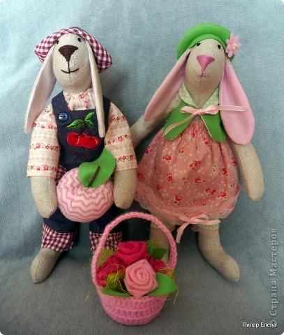 И снова кролики.. фото 3