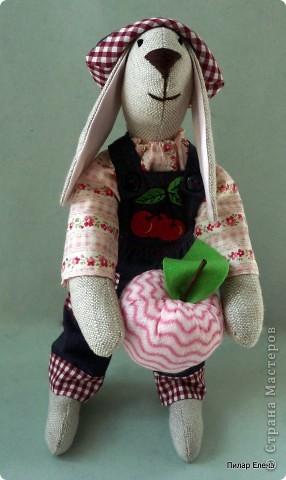 И снова кролики.. фото 8