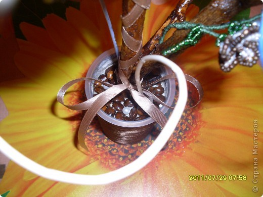 кофейный первенец в подарок. фото 3