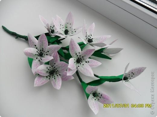 Вот такой букет появился в моей коллекции. Идею повзаимствовала на корейском сайте, только там фигурирует веточка лилии. А мне кажется, что она больше похожа на лилейник. Работу делала специально для своей кухни, в пару к макам, поэтому и оформление одинаковое. фото 4