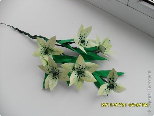 Вот такой букет появился в моей коллекции. Идею повзаимствовала на корейском сайте, только там фигурирует веточка лилии. А мне кажется, что она больше похожа на лилейник. Работу делала специально для своей кухни, в пару к макам, поэтому и оформление одинаковое. фото 5