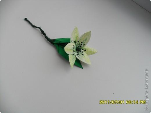 Вот такой букет появился в моей коллекции. Идею повзаимствовала на корейском сайте, только там фигурирует веточка лилии. А мне кажется, что она больше похожа на лилейник. Работу делала специально для своей кухни, в пару к макам, поэтому и оформление одинаковое. фото 9