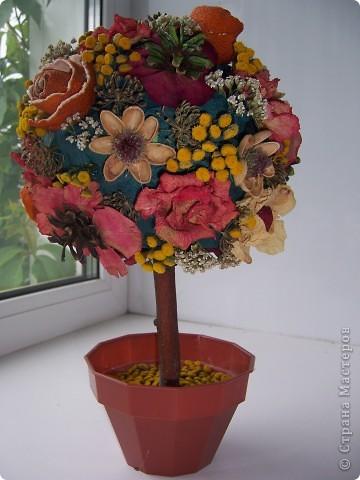 Цветочное дерево фото 2