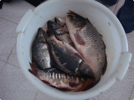 В пятницу вечером, муж собирался на рыбалку, и я вспомнила , что его старенький любимый комбинезон порвался, пришлось быстро его латать. Пришила заплатку, она оказалась очень большой, надо было ее как-то закрепить,  фото 4