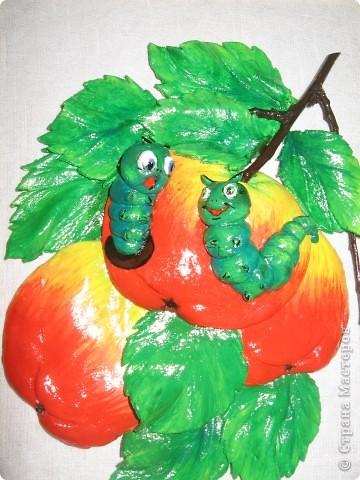 Вот такие яблочки у меня получились, а почему с червячками - так ведь натур.продукт. фото 5