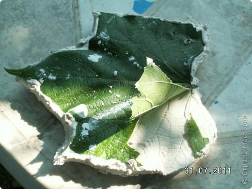 Мои первые виноградные листочки из гипса фото 9