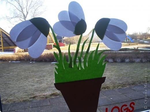 gaidot pavasari!! фото 1