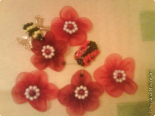 цветочки и насекомые