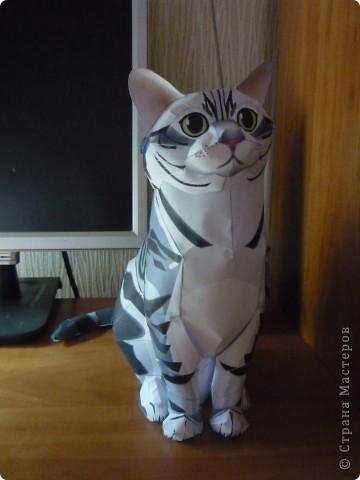 Не верилось, что соберу кота из бумаги. Но вот - сидит у меня на столе с важным видом. Пробуйте тоже. фото 2