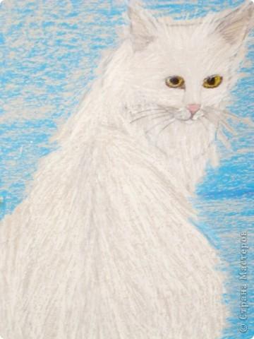 этих котят я рисовала  акриловыми красками на специальной бумаге...тут они в рамочке. фото 4
