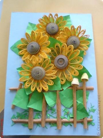 Эти подсолнушки уже готовились конкретно на подарок родственнику на день варенья. фото 2