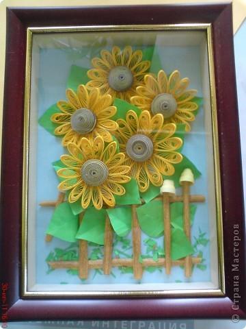 Эти подсолнушки уже готовились конкретно на подарок родственнику на день варенья. фото 1