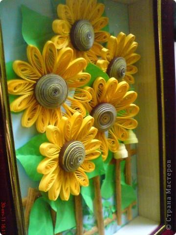 Эти подсолнушки уже готовились конкретно на подарок родственнику на день варенья. фото 4