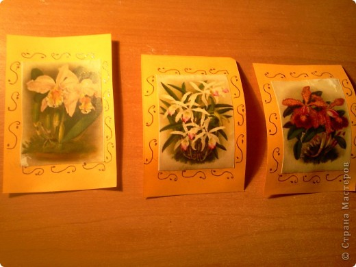 Первыми выбирают:Сидоровская Настя,Valkiria №1-Сидоровская Настя №2-Лапшова Катя №3- Valkiria