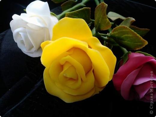 И опять у меня розы. Ими конечно уже не удивить, но лепить их у меня была веская причина. фото 1