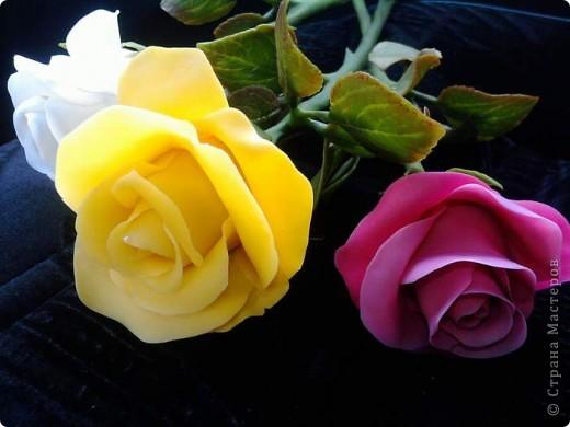 И опять у меня розы. Ими конечно уже не удивить, но лепить их у меня была веская причина. фото 2