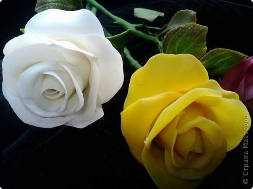 И опять у меня розы. Ими конечно уже не удивить, но лепить их у меня была веская причина. фото 3