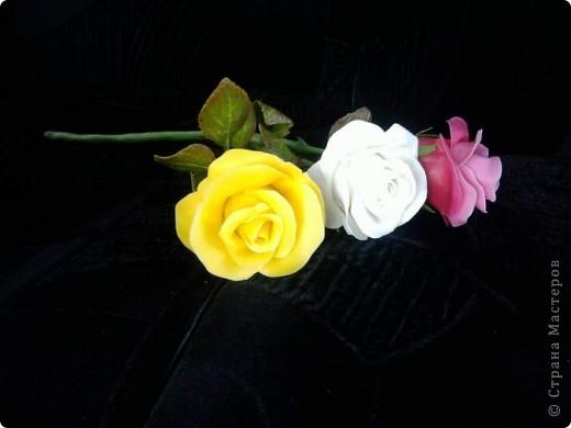 И опять у меня розы. Ими конечно уже не удивить, но лепить их у меня была веская причина. фото 4