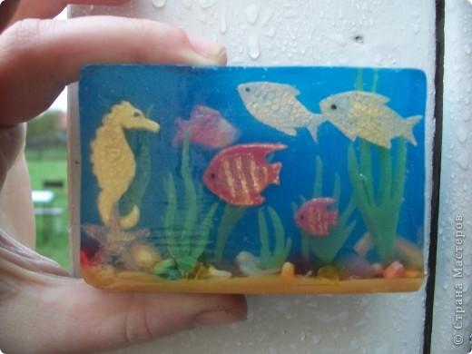 Вот он,мой аквариум... фото 3