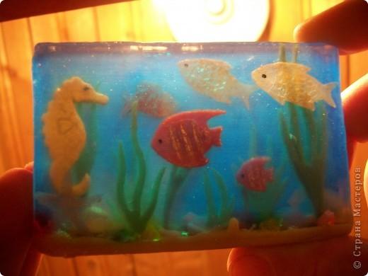 Вот он,мой аквариум... фото 5