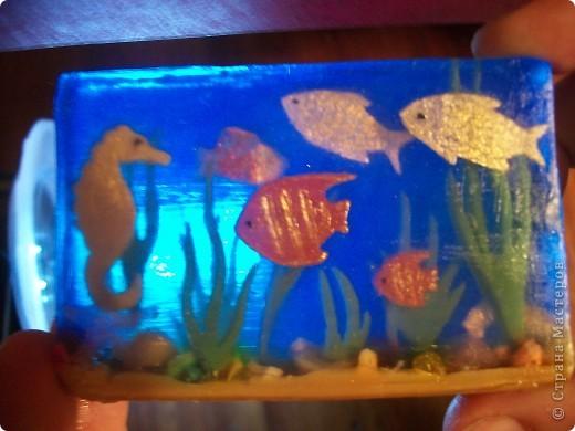 Вот он,мой аквариум... фото 4