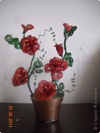 Сегодня будем делать вот такие цветы.Сразу предупреждаю,идея не моя, увидела подобное чудо на бисерном форуме радуга рукоделия.Правда там немного другие листики и вообще красотища....неописуемая.Вдохновилась там. фото 36