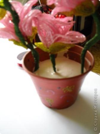 Сегодня будем делать вот такие цветы.Сразу предупреждаю,идея не моя, увидела подобное чудо на бисерном форуме радуга рукоделия.Правда там немного другие листики и вообще красотища....неописуемая.Вдохновилась там. фото 32