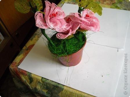 Сегодня будем делать вот такие цветы.Сразу предупреждаю,идея не моя, увидела подобное чудо на бисерном форуме радуга рукоделия.Правда там немного другие листики и вообще красотища....неописуемая.Вдохновилась там. фото 34