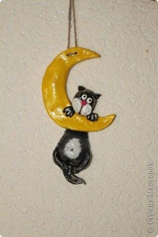 Любимый котик =) фото 1