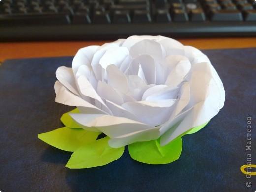 Вдохновленная МК http://stranamasterov.ru/node/131184?c=favorite решила прямо на работе ее испробовать. фото 2