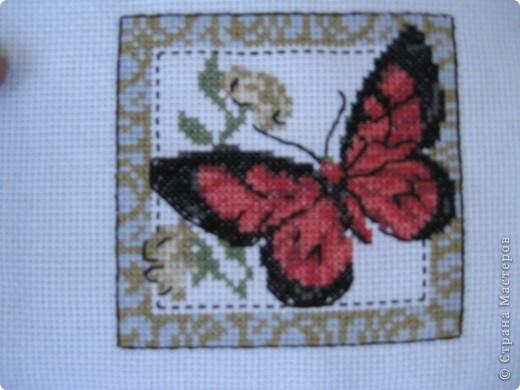 Бабочка №1 фото 1