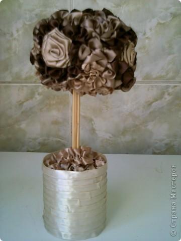 """дърво """"Млечен шоколад"""" фото 1"""