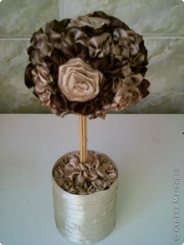 """дърво """"Млечен шоколад"""" фото 2"""