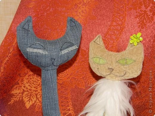 Кошечки (повторяшка) фото 5