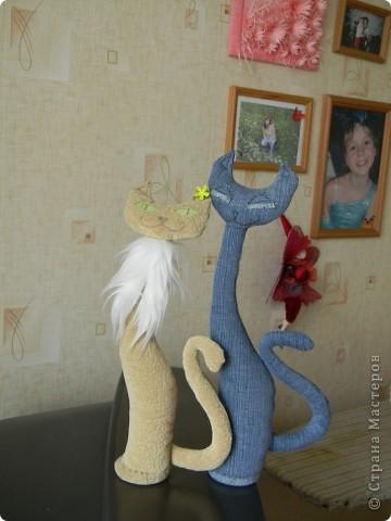 Кошечки (повторяшка) фото 2