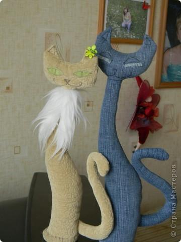 Кошечки (повторяшка) фото 1