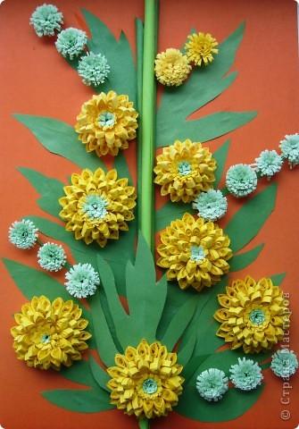 Август - время цветения Рудбекии. фото 1