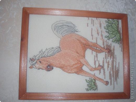 """Моя любимая лошадка по журналу """"чудесные мгновенья"""" фото 1"""