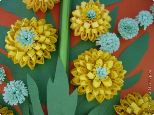 Август - время цветения Рудбекии. фото 3