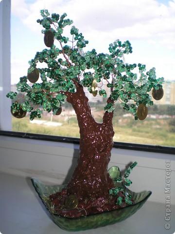 Новый вариант денежного деревца!!!
