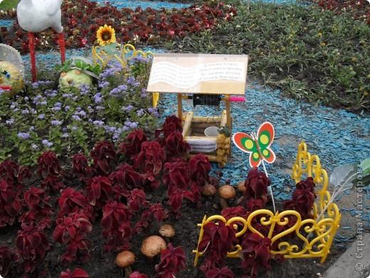 """Продолжаем экскурсию по выставочным скверам юбилейной выставки """"Флора"""" в городе Омске. фото 4"""