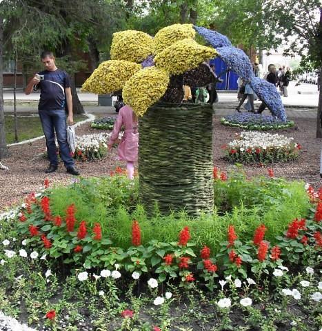 """Продолжаем экскурсию по выставочным скверам юбилейной выставки """"Флора"""" в городе Омске. фото 20"""