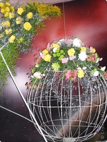"""Продолжаем экскурсию по выставочным скверам юбилейной выставки """"Флора"""" в городе Омске. фото 32"""