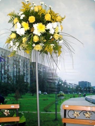 """Продолжаем экскурсию по выставочным скверам юбилейной выставки """"Флора"""" в городе Омске. фото 34"""