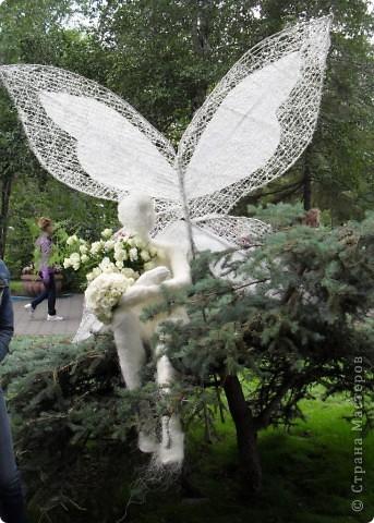 """Продолжаем экскурсию по выставочным скверам юбилейной выставки """"Флора"""" в городе Омске. фото 22"""