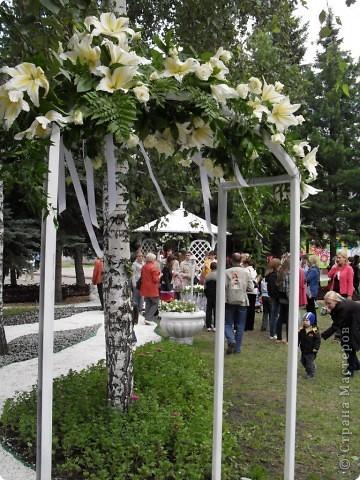 """Продолжаем экскурсию по выставочным скверам юбилейной выставки """"Флора"""" в городе Омске. фото 25"""