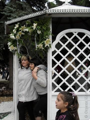"""Продолжаем экскурсию по выставочным скверам юбилейной выставки """"Флора"""" в городе Омске. фото 24"""