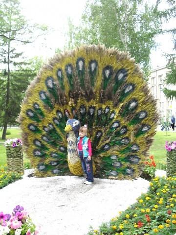 """Продолжаем экскурсию по выставочным скверам юбилейной выставки """"Флора"""" в городе Омске. фото 21"""