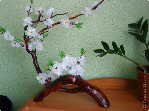 Сакура из коряги фото 3